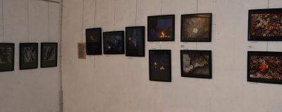 photos Plume-expo artistes